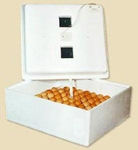 Инкубатор  бытовой  (63 яйца с механическим поворотом яиц на  220В)